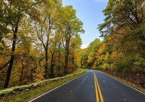 Cheaper Arkansas car insurance for a Civic